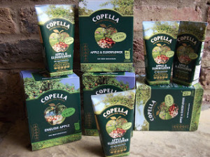 Lunch box Treats – Copella Apple Juice Cartons