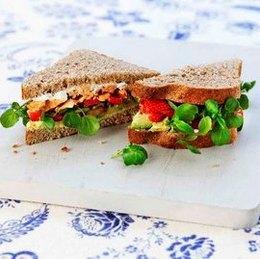 worlds healthiest sandwich