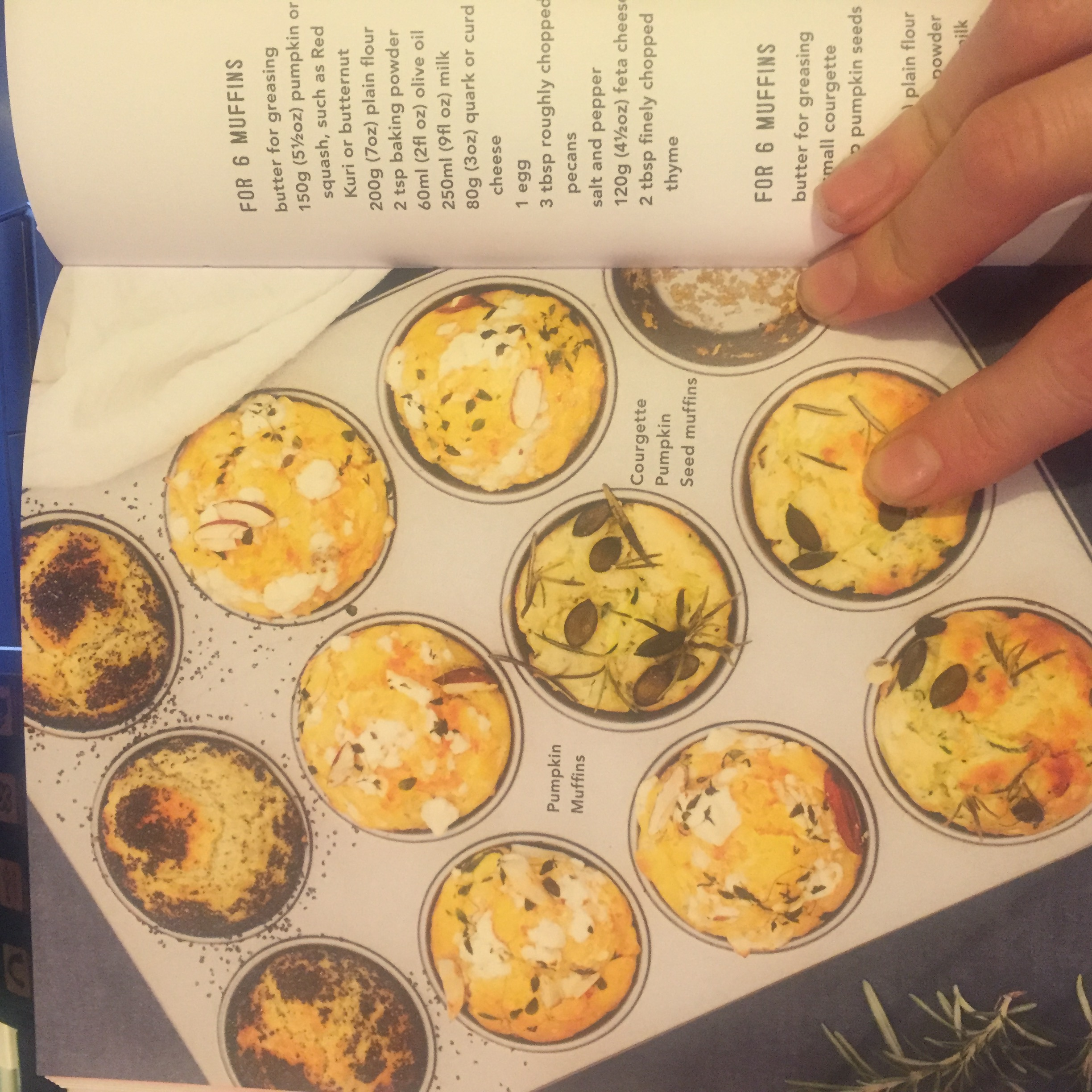 The Lunchbox Book Lunchbox World review